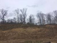 Home for sale: Lot 25a Sugar Maple Pl., Bellbrook, OH 45305