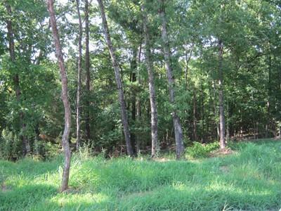 1437 S. Rogers, Clarksville, AR 72830 Photo 33