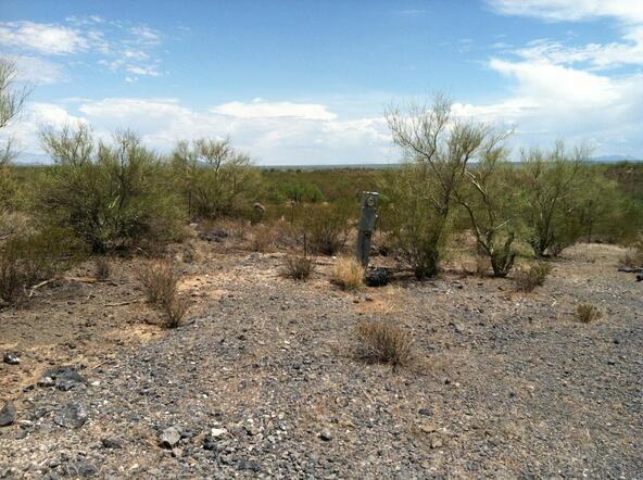 7730 Atkinson S., Tucson, AZ 85735 Photo 7