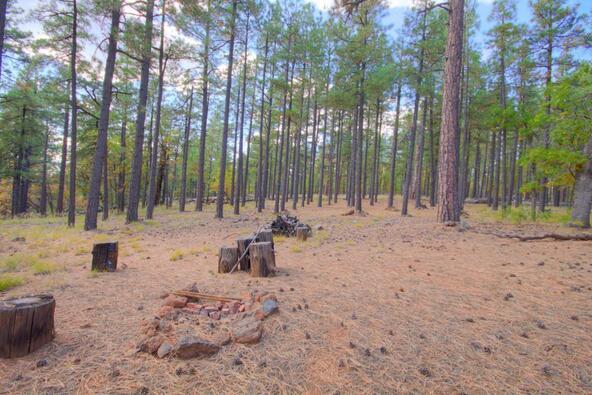 8100 W. Dk Ranch Rd., Flagstaff, AZ 86005 Photo 16