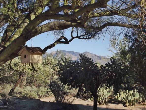 10151 N. Orange Ranch, Tucson, AZ 85742 Photo 81