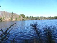 Home for sale: On Burnham Lake Rd., Lake Tomahawk, WI 04539