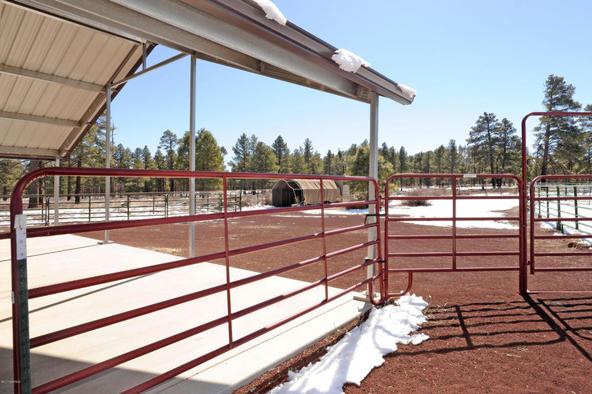 11377 N. Onika Ln., Flagstaff, AZ 86004 Photo 26