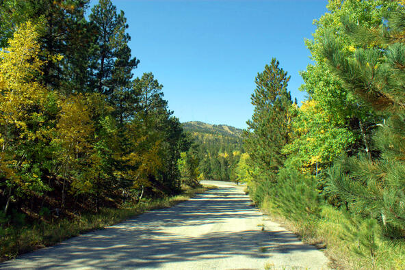 Lot 5, Powder House Trail, Lead, SD 57754 Photo 17