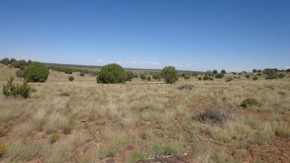 645 Westwood Ranch Lot 645, Seligman, AZ 86337 Photo 4
