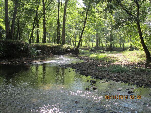1865 County Rd. 99, Gaylesville, AL 35973 Photo 21