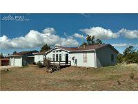 Home for sale: 258 Carl Rd., Guffey, CO 80820