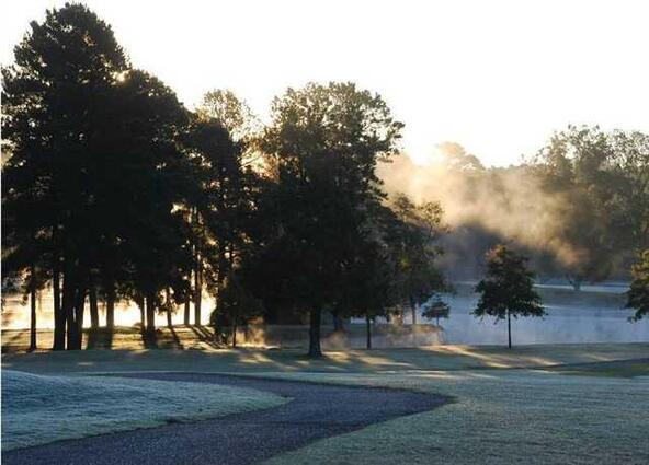 233 Arlington Park Ct., Hot Springs, AR 71901 Photo 1