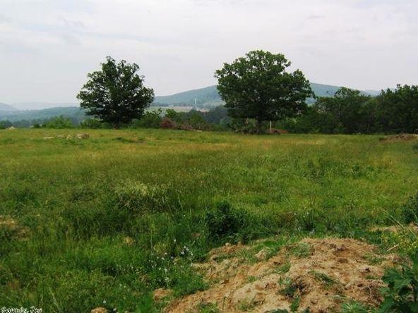 1001 Farris Cemetery Rd., Onia, AR 72663 Photo 8