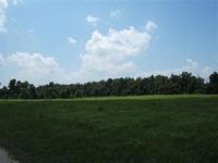 Home for sale: Tract 5 North Still Ln., Willard, MO 65781