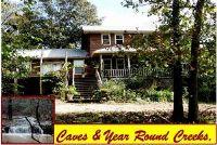 Home for sale: 783 Cambridge Ln., Pyatt, AR 72672