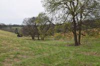 Home for sale: 3 Arno Allisona Rd., College Grove, TN 37046