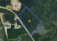 Home for sale: 0 Cane Branch Rd., Walterboro, SC 29488