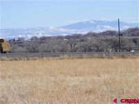 Home for sale: 1317 Hwy. 50, Delta, CO 81416