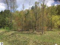 Home for sale: Hoxie Rd., Cedar, MI 49621
