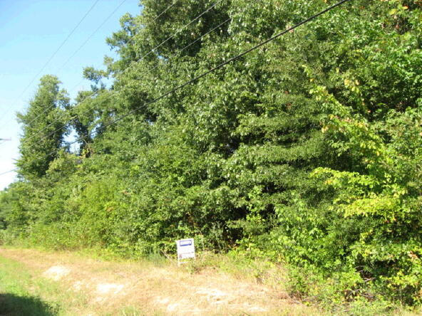 2 Acres Old Greensboro Rd., Jonesboro, AR 72401 Photo 9