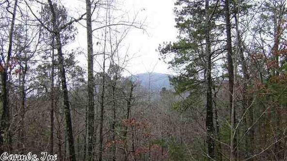 45 Crows Nest, Hot Springs Village, AR 71909 Photo 12