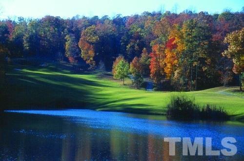 10416 Stone, Chapel Hill, NC 27517 Photo 15