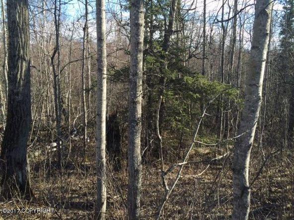 5160 E. Iroquois Ct., Wasilla, AK 99654 Photo 2
