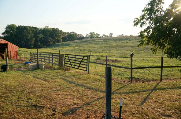 6491 County Rd. 49, Ranburne, AL 36273 Photo 30