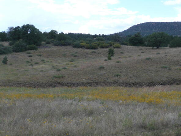 290 N. Navajo Trail, Young, AZ 85554 Photo 15