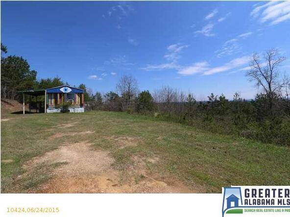1580 Baker Rd., Ashville, AL 35953 Photo 18