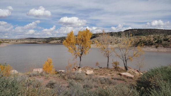 99 River Springs Ranch Unit 3 --, Saint Johns, AZ 85936 Photo 29