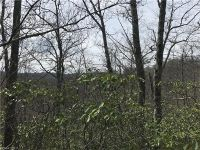Home for sale: Lot 2 Mocassin Trail, Rosman, NC 28772
