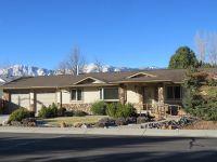 Home for sale: 1610 Burrukia St., Minden, NV 89423