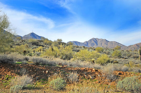 14340 E. Desert Tortoise Trail, Fountain Hills, AZ 85268 Photo 42