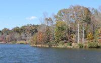 Home for sale: Lot 31 Forked Leaf Rd., Cleveland, GA 30528