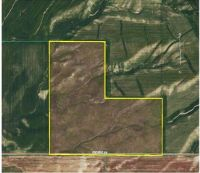 Home for sale: Tbd Criddle Rd., Downey, ID 83234