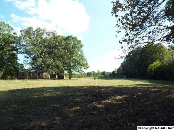 1654 County Rd. 641, Mentone, AL 35984 Photo 32