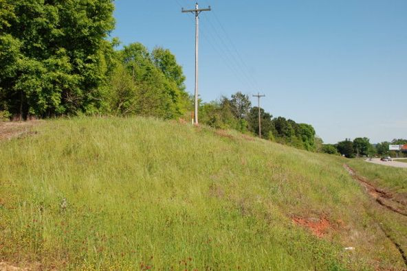 6.6 Ac Al Hwy. 55 N., River Falls, AL 36476 Photo 4