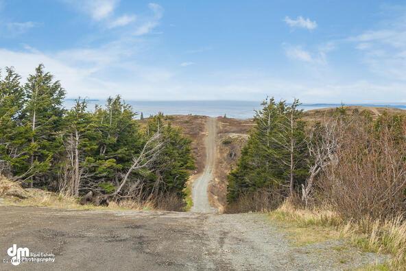 9820 Meadow Rd., Anchorage, AK 99516 Photo 14