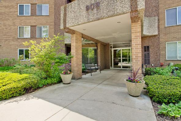 909 East Kenilworth Avenue, Palatine, IL 60074 Photo 21