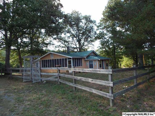 1654 County Rd. 641, Mentone, AL 35984 Photo 4