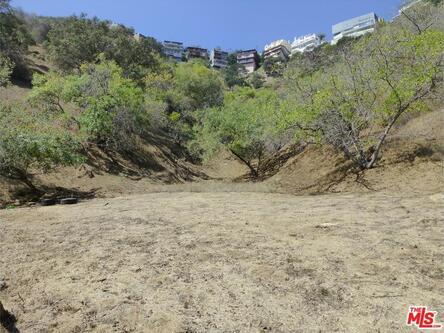 2251 N. Oakden Dr., Los Angeles, CA 90046 Photo 13