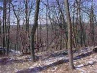 Home for sale: 20.93 Ac County Rd. A, Wisconsin Dells, WI 53965