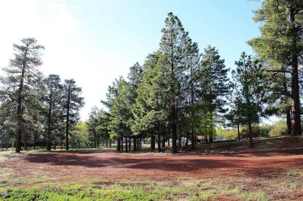 2201 E. White Mountain Blvd., Pinetop, AZ 85935 Photo 5