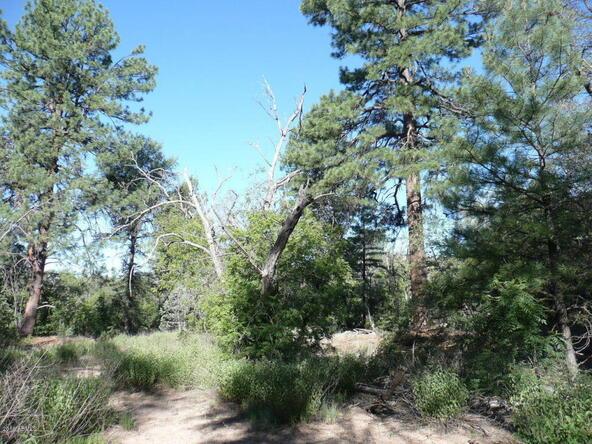 200 E. Cline Crossing, Young, AZ 85554 Photo 67