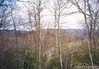 Home for sale: Lot 12 Sauls Camp Rd., Blowing Rock, NC 28605