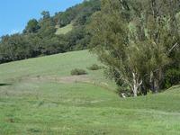 Home for sale: 5335 Stow Cir., Santa Rosa, CA 95409