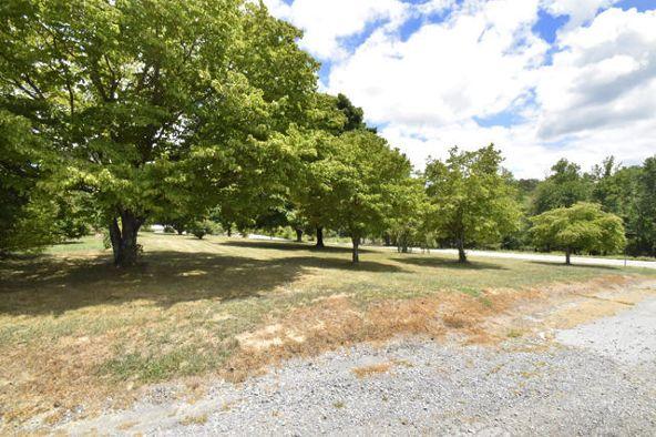 31159 Alabama Hwy. 71 Hwy, Bryant, AL 35958 Photo 43