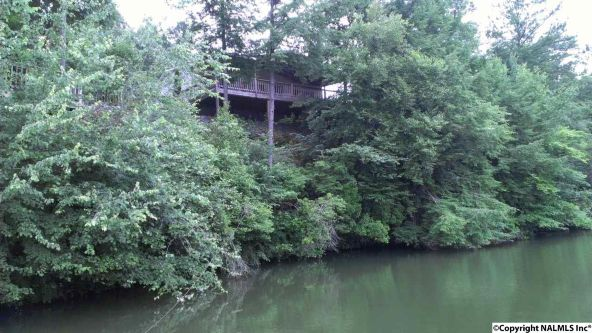 133 Cane Creek Overlook, Double Springs, AL 35553 Photo 24
