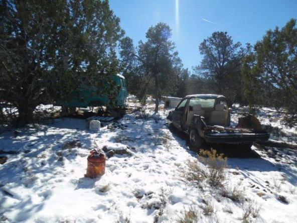 459 Hardrock Rd., Seligman, AZ 86337 Photo 33