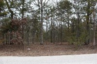 Home for sale: 11 Acres Pine Top Rd., Hollister, MO 65672