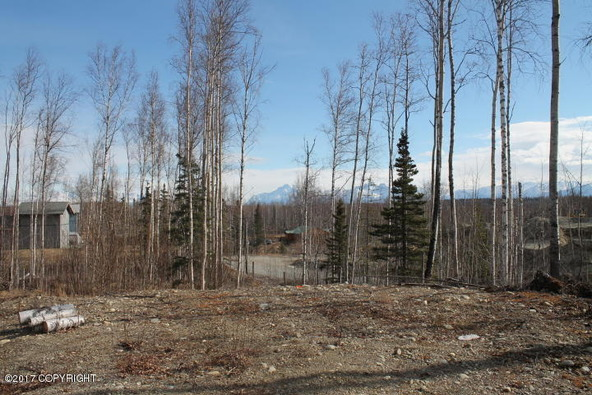 571 N. Meadow Lakes, Wasilla, AK 99652 Photo 34