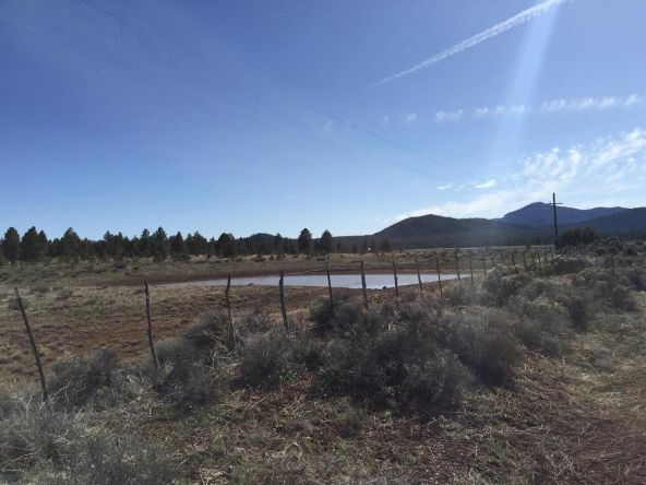 3602 E. Mountain Man Trail, Williams, AZ 86046 Photo 39