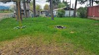 Home for sale: 545 Plentywood Dr., Kalispell, MT 59901